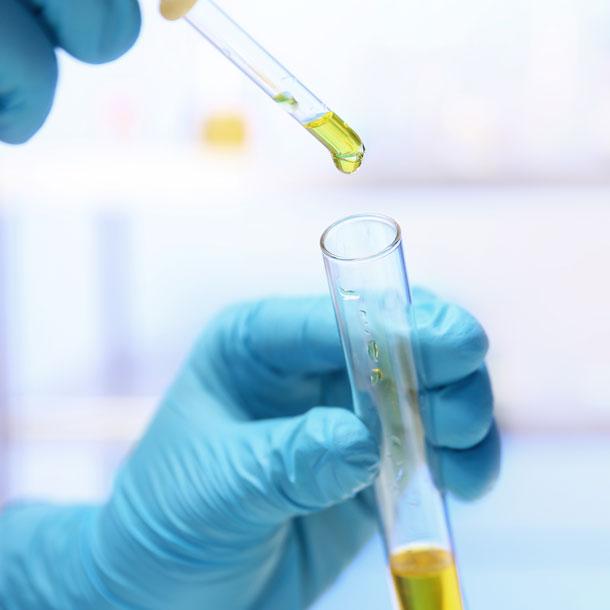 Quality testing laboratory